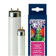 Люминесцентная лампа для аквариума Т8 Ferplast FRESHLIFE 14 Ватт 36,1 см 67014000