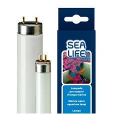 Люминесцентная лампа для аквариума Т8 Ferplast SEALIFE 30 Ватт 89,5 см