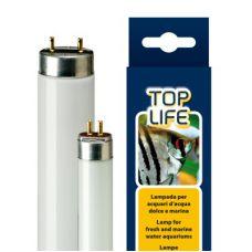 Люминесцентная лампа для аквариума Т8 Ferplast TOPLIFE 15 Ватт 43,7 см 67215000