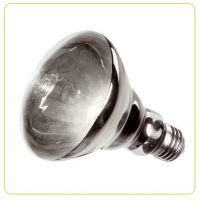Лампа зеркальная обогревающая Ferplast 100W