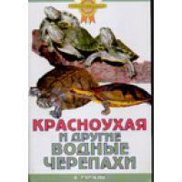 Книга Красноухая и другие водные черепахи