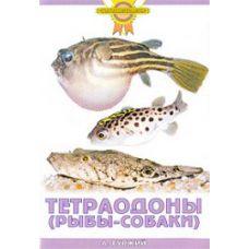 Книга Тетраодоны (рыбы-собаки)