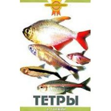 Книга Тетры