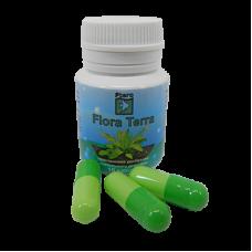 Ptero Флора Terra 10 капсул (комлексное удобрение для аквариумных растений)