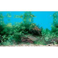 Задний фон для аквариума односторонний 50см высота