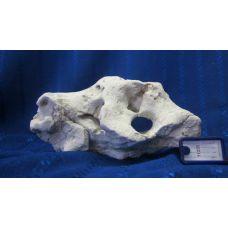 Кенийский камень 11255