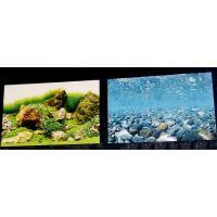 Задний фон для аквариума двухсторонний 50см высота 9078/9079