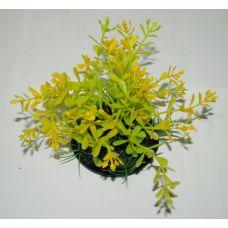 Пластиковое растение для аквариума 054081