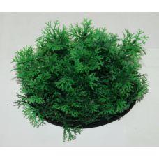 Пластиковое растение для аквариума 077092