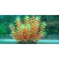 Пластиковое растение для аквариума 097281