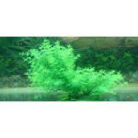 Пластиковое растение для аквариума 01020