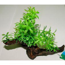Пластиковое растение на коряге для аквариума 223132