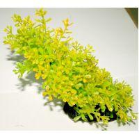 Пластиковое растение для аквариума 5010