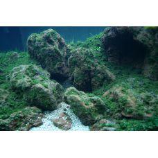 Применение лавы в аквариуме