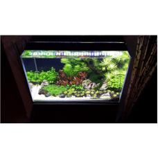 Первый запуск аквариума до 200 литров