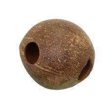 Домик-кокос для сомов V3 цельный гладкий с отверстиями
