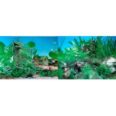 Задний фон для аквариума двухсторонний 30см высота 9003/9011