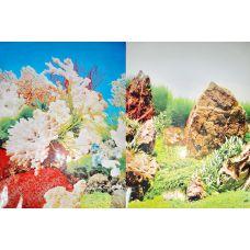 Задний фон для аквариума двухсторонний 50см высота YH002/9019