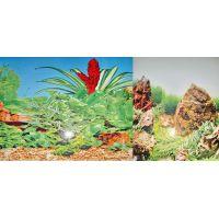 Задний фон для аквариума двухсторонний 30см высота YH002/DB6