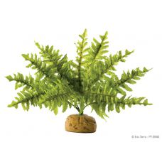 Декорация растение Boston Fern Small Hagen Exo Terra PT2990