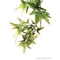 Декорация растение Croton Small Hagen Exo Terra PT3000