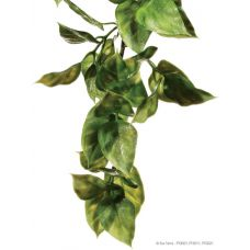 Декорация растение Amapallo Small Hagen Exo Terra PT3001