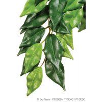 Декорация растение Ficus Small Hagen Exo Terra PT3030