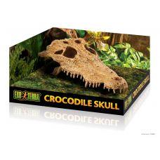 Декорация для аквариума, Череп крокодила Hagen Exo Terra PT2856