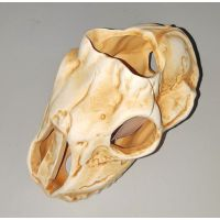 Керамика для аквариума Череп 45K