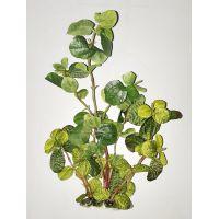 Шелковое растение для аквариума 1630
