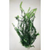 Пластиковое растение для аквариума 027302