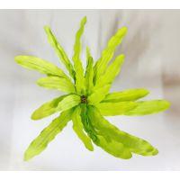 Шелковое растение для аквариума SP 208 S
