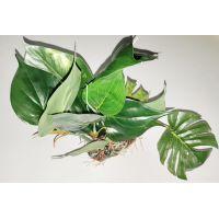 Шелковое растение для аквариума 1220