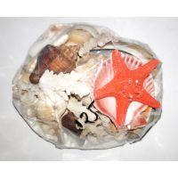 Набор натуральных океанических раковин с морской звездой 10см